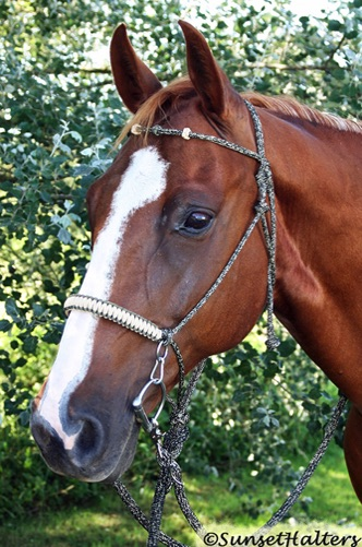 diamond braid, rope halter, rope halter bridle, trail bridle, halter bridle